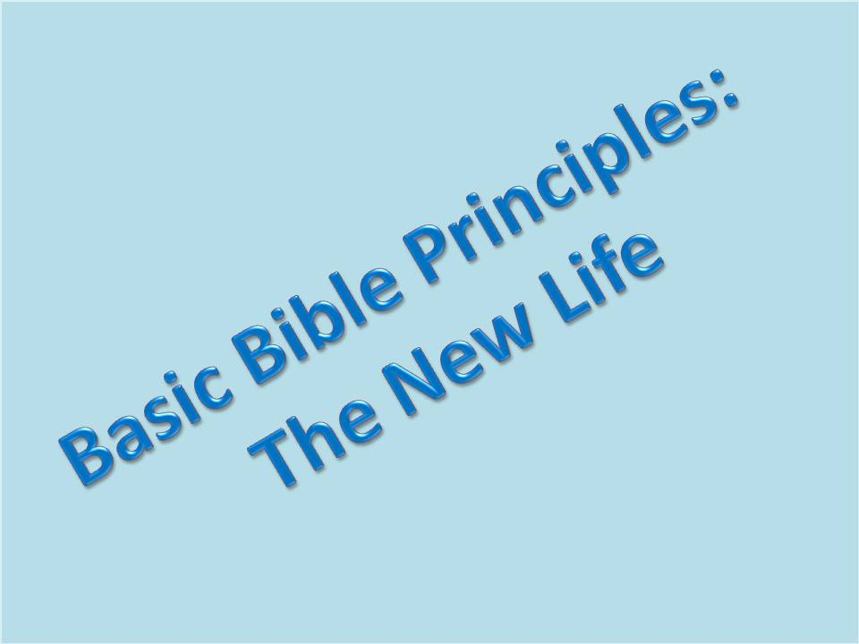 title template for basic bible principles the new life